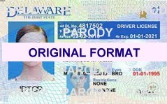 Delaware driver license original format design novelty identity software card design products for new identity creations
