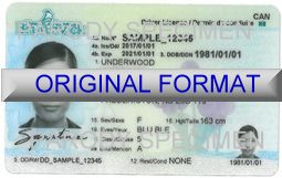 fake id fake drivers license fake new brunswick fake id and fake